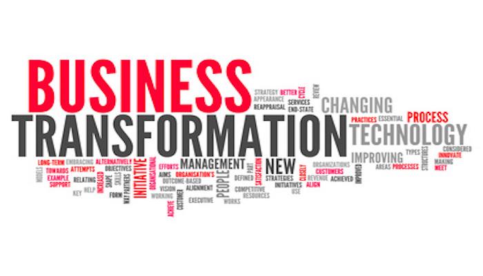 "Business Transformation: Key ""hard factors"" that influence success"