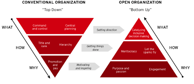 open org management model